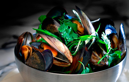 Mussels Food Photography